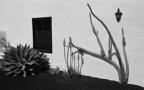 Tahiche, Lanzarote, Canary Islands - 1992