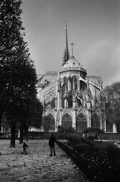 Cathédrale Notre-Dame de Paris, Paris, France - 2015